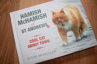Hamish McHamish - celebrity St Andrews cat