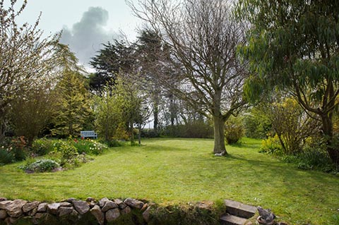Large, mature & private garden